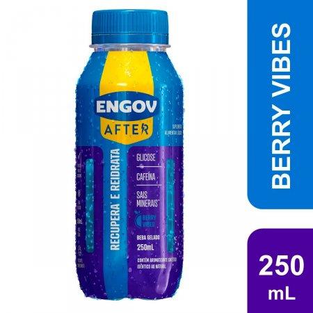 Bebida Engov After Berry Vibes 250ml |