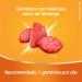 Redoxitos Vitamina C Sabor Morango com 25 Unidades | Onofre.com Foto 6